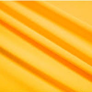 Mango Lycra